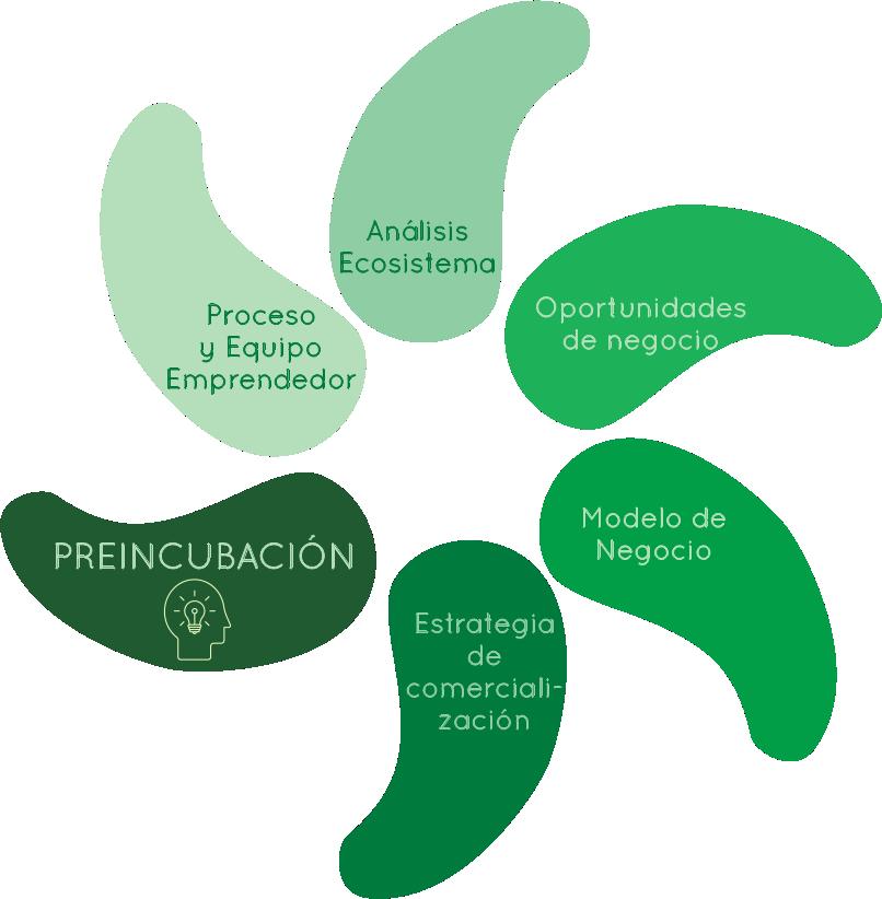Contenidos Preincubación 1